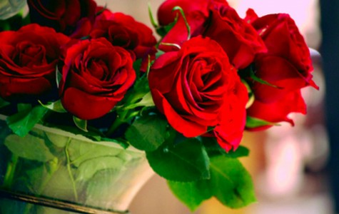 5 Things You (Don't) Want to Know About Valentine's Day