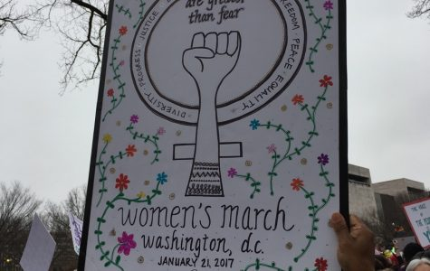 Women March on Washington… and Worldwide