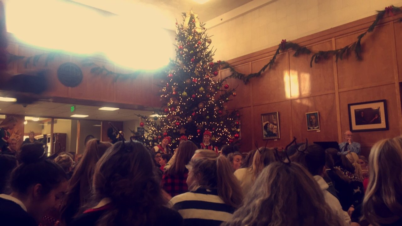 The 20 ft. tree and students sitting around it in the foyer